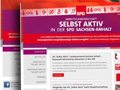 Arbeitsgemeinschaften der SPD Sachsen-Anhalt präsentieren sich via SPDBOX-Homepagepaket im Netz